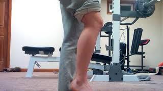 Muscle Functions: Plantaris