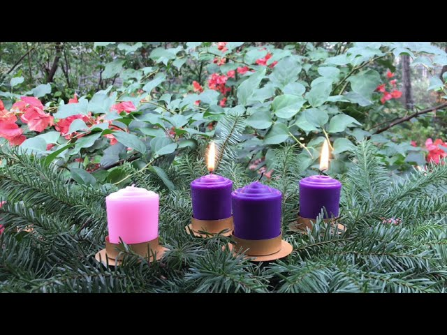 A Vision of Light in the Darkness - Tuesday of the Second Week of Advent