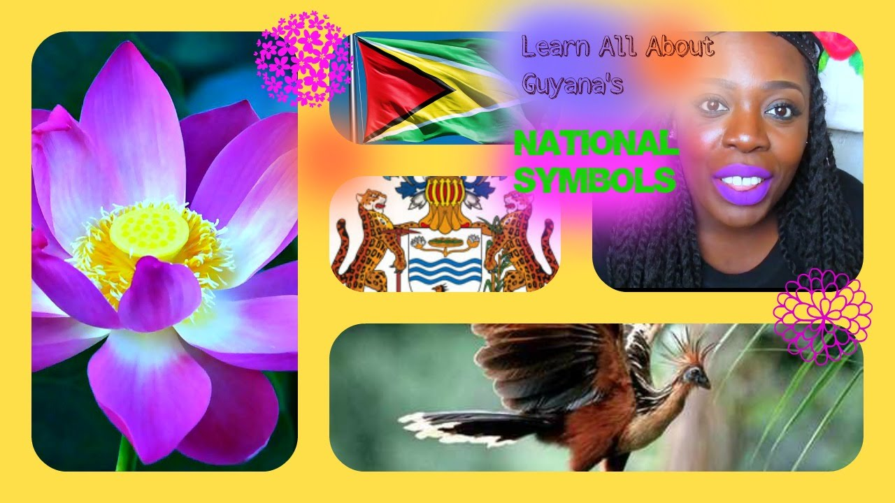 About Guyana National Symbols And Meaning Youtube