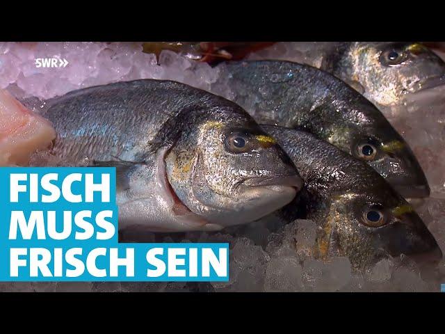 Wie der Fisch auf den Teller kommt | Essgeschichten | SWR Fernsehen Rheinland-Pfalz