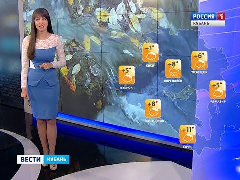 В Краснодаре завтра ожидается пасмурная погода