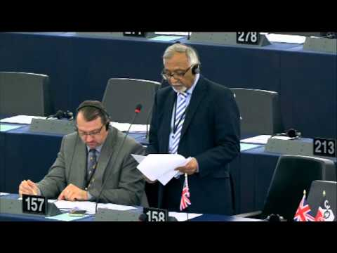 Freedom of expression in Egypt - Amjad Bashir MEP