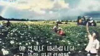 DPRK Music 65