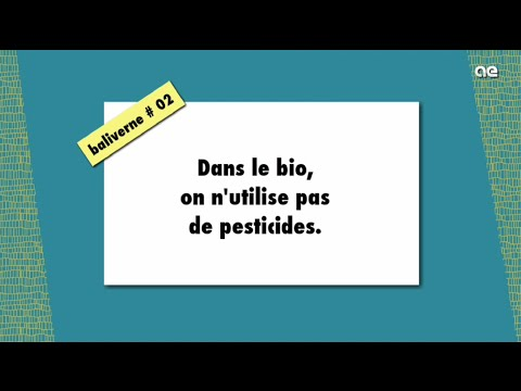 Dans le bio on n'utilise pas de pesticides / BALIVERNE #02