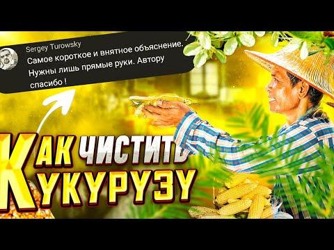 Как очистить кукурузу от зерен в домашних