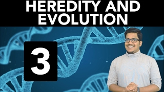 biology heredity and evolution part 3