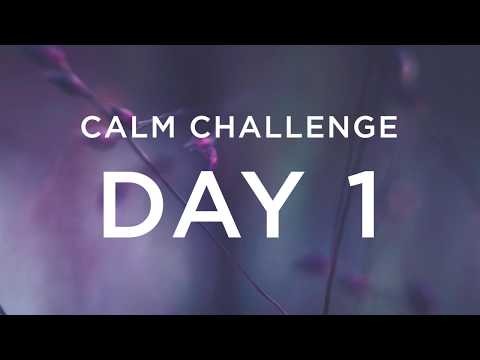 Calm Challenge | Day 1