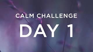 Calm Challenge | Day 1