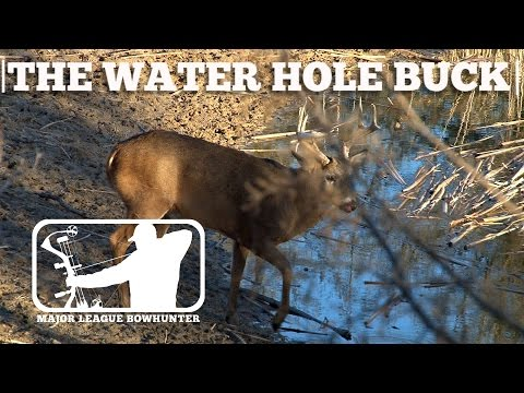 Hunting Water Holes - Chippers First Kansas Buck | Major League Bowhunter