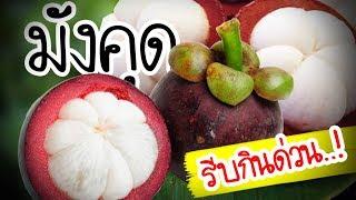 รีบกินด่วน..!!! มังคุด สุดยอดยอดผลไม้ ที่ทำให้ร่างกายดีขนาดนี้....| Nava DIY
