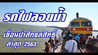 รถไฟลอยน้ำ เขื่อนป่าสักชลสิทธิ์ ล่าสุด วันที่14 พฤศจิกายน 2563