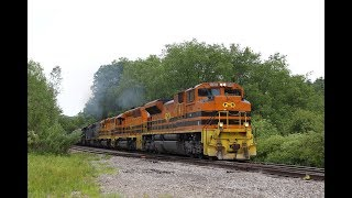 PW 4302 Leads RIBT, Bringing in GEXR 3054 in SP Paint