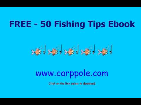 Fishing Tips For Beginners - Download Ebook Free
