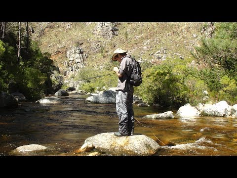 Fly fishing the Cape streams.