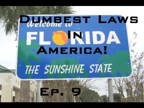 Dumbest laws in florida