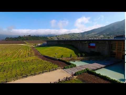 Montes Winery