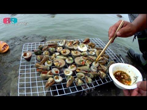 [自給自足] 現挖現烤超美味鮮螺,這裡超多的...腳邊隨便採採就一堆 2019/05/台灣69J釣魚俱樂部(69J Fishing Club)