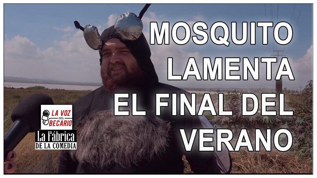 Mosquito lamenta el final del verano