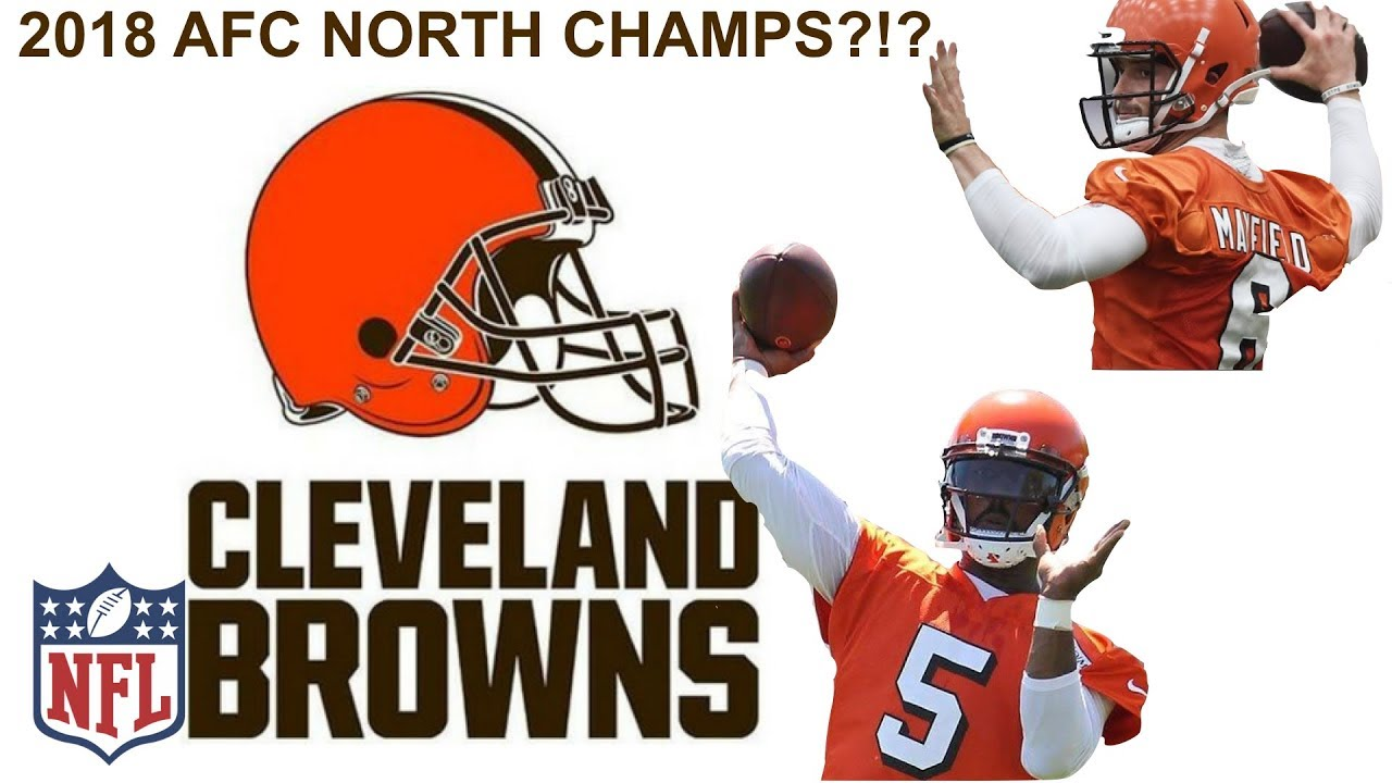 4243a6ff 2018 AFC NORTH CHAMPIONS! - YouTube