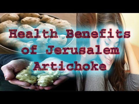 Health Benefits of Jerusalem Artichoke 2016 | 10 Health Benefits of Jerusalem Artichoke 2016