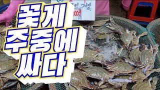 인천 연안부두 종합어시장 꽃게,전어,왕새우 최신 시세정…