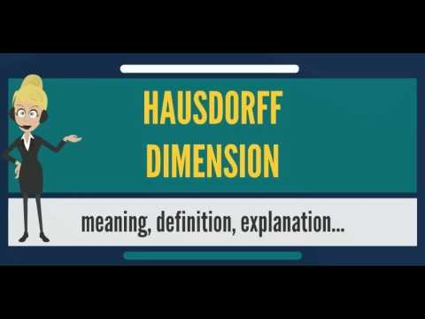 What is HAUSDORFF DIMENSION? What does HAUSDORFF DIMENSION mean? HAUSDORFF DIMENSION meaning