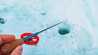 Учу как БЛЕСНИТЬ ОКУНЯ юного рыбака. Зимняя рыбалка на малой реке. ОКУНЬ на БЛЕСНУ. #ДимаSh