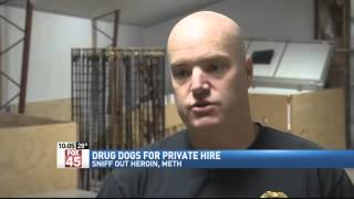 Drug Sniffing Dogs For Private Hire