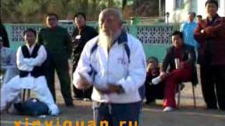 Dai Shi Xin Yi. Grandmaster Wang Yinghai (disciple of legendary Dai Kui)
