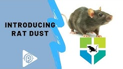 Introducing Rat Dust (episode 138A)