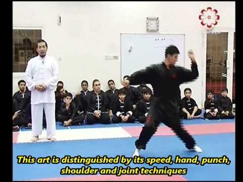 Part 4: Baiji Quan Taolu - Kuwait Sports Channel Martial Arts Special w/ Sifu Khader Deng