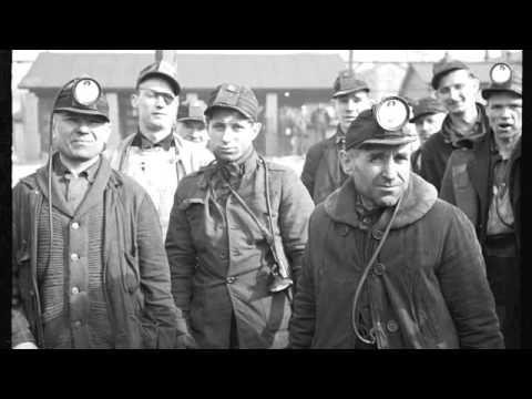 American Labor