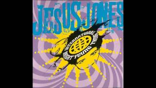 Watch Jesus Jones Need To Know video