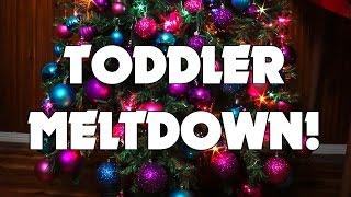 Toddler Meltdown! (Vlogmas Week 2 - Part 2)