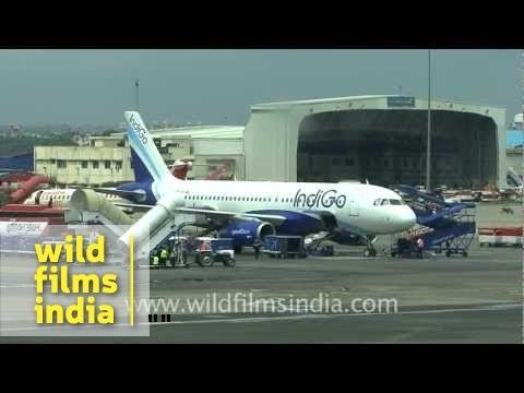 Indigo plane at Indira Gandhi International Airport Terminal 3, New Delhi