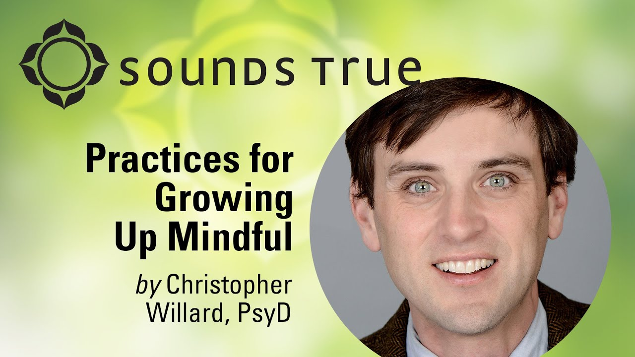 Christopher Willard, Psy.D