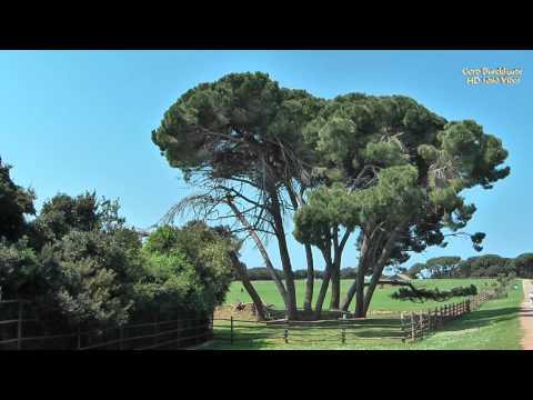 """Der Südwesten Istriens - Teil 3 """"Die Brijuni Inseln"""""""