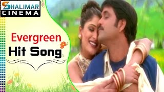 Evergreen Hit Song of The Day || Swapna Venuvedo Video Song || Shalimarcinema || Shlimarcinema