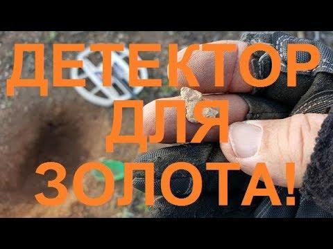 Как выбрать металлоискатель для поиска монет и золота