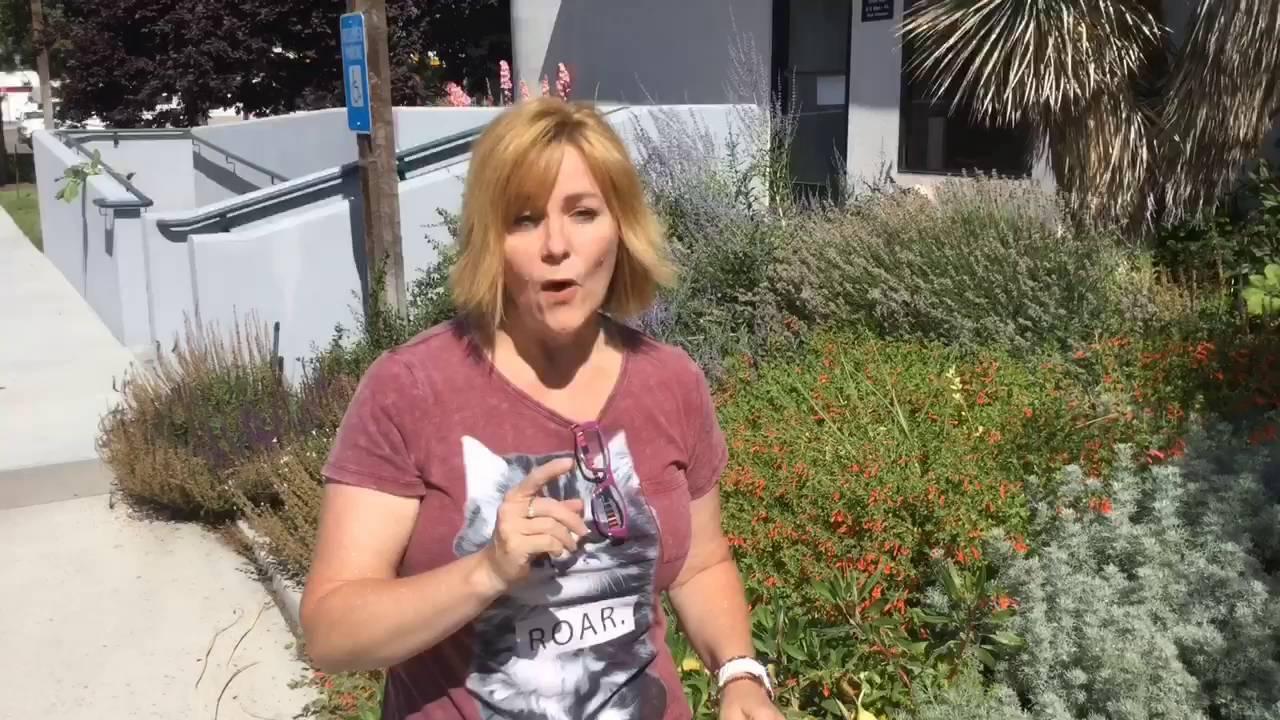 X Factor For High Desert Gardens Is Xeriscaping Youtube