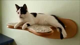 Игровая мебель для кошек