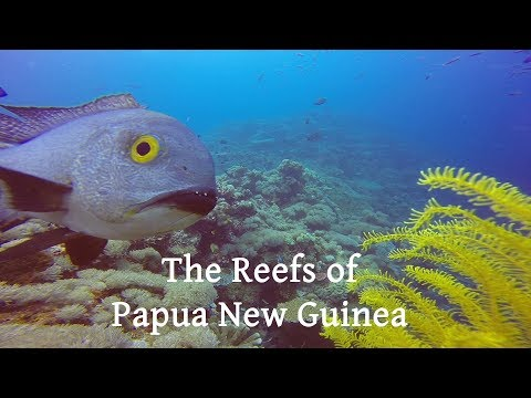 The Reefs of Papua New Guinea, captured with GoPro HERO