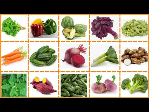 Vegetables Name with Pictures | सभी सब्जियों के English ...