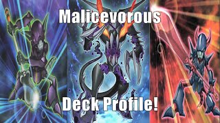 YuGiOh! Malicevorous Dark Mist Turbo Deck Profile! August 2014! The Power of Forks and Spoons?!