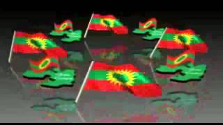 Adda Bilisummaa Oromoo (ABO)