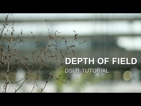 DSLR Tutorial: Depth of Field