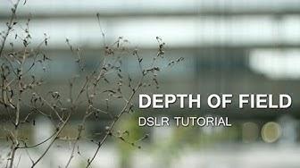 DSLR Tutorial: Depth of Field