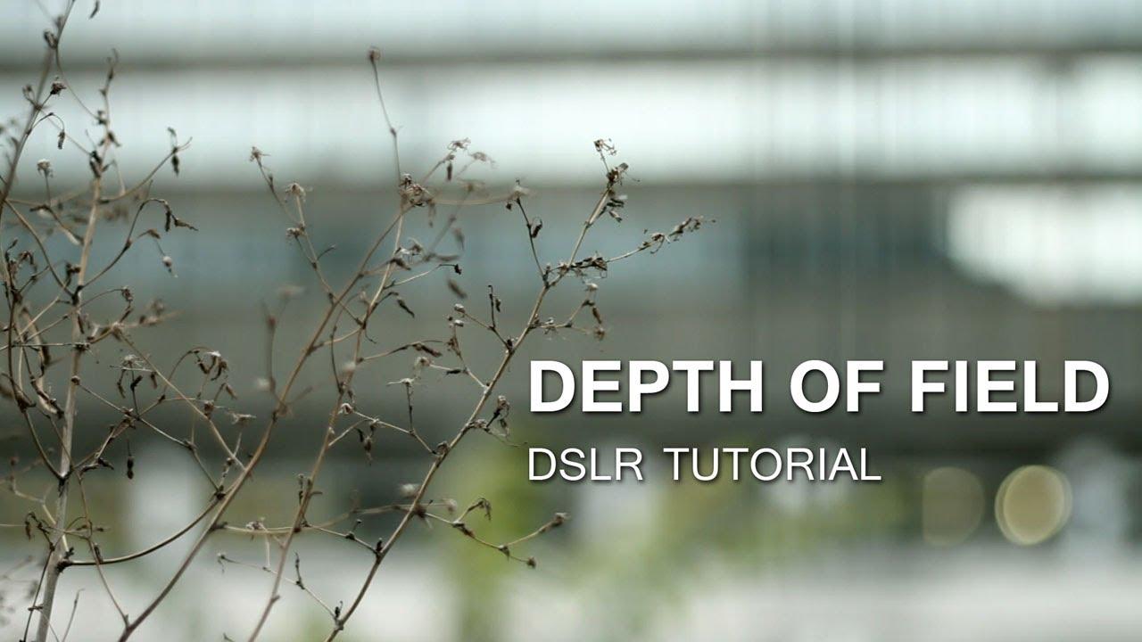 the depth of - photo #19