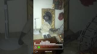Haunted Doll multi-EVP