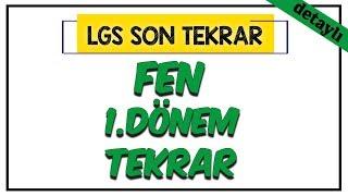 Fen Bilimleri 1.Dönem Tekrar (Detaylı)  LGS Son Tekrar Programı